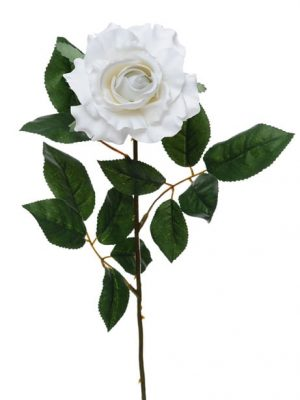 Premium Rose Medium White 69cm