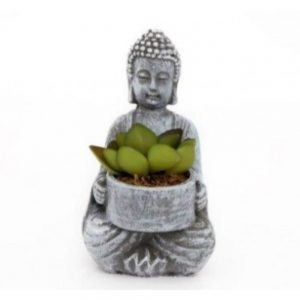 Buddha With Succulent Height 14cm