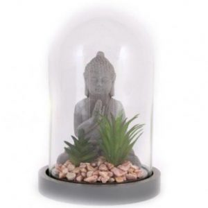 Buddha and Succulents In Dome Height 21cm