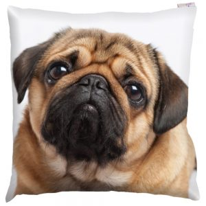 Pug Photo Design Cushion Cover with Insert 50x50cm