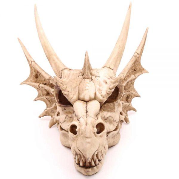 Large Dragon Skull Decoration