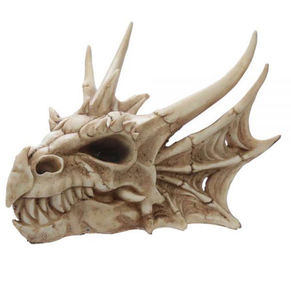 Dragon Skull Decoration