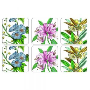 Pimpernel Stafford Blooms Six Coasters