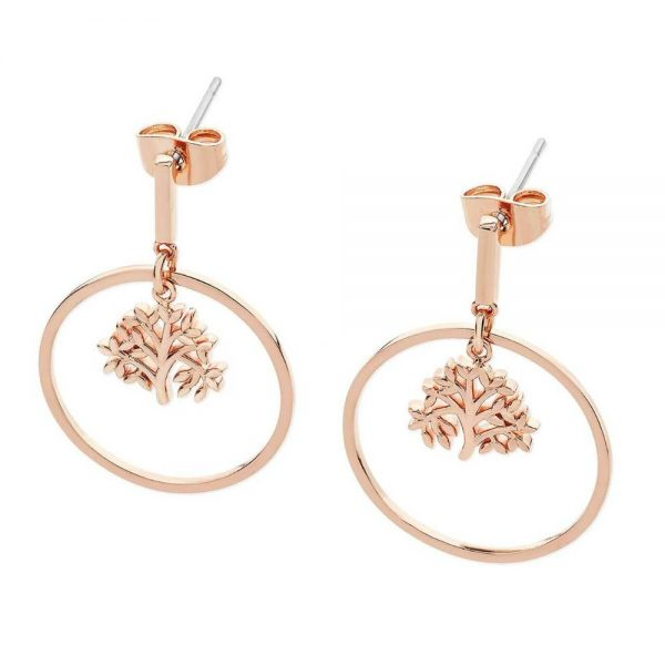 Rose Gold Circle Earrings Suspended Tree Of Life