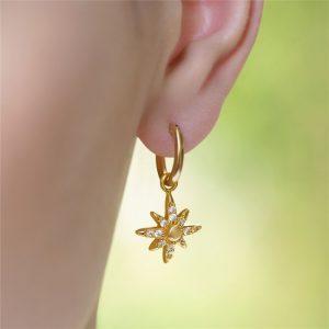 Newbridge Amy Star Earrings with Clear Stones