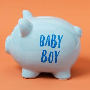 Pennies and Dreams Ceramic Pig Money Box Boy
